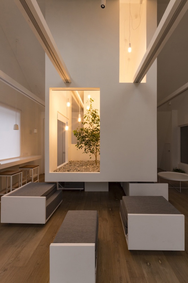 Ấn tượng với ngôi nhà chỉ 48m² nhưng có khoảng xanh cực bắt mắt với phòng khách treo lơ lửng - Ảnh 9.