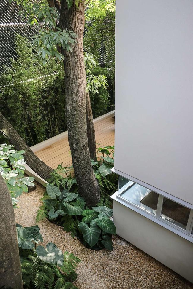 Giấc mơ về một ngôi nhà sinh thái, thân thiện với môi trường sẽ nằm trong tầm tay nhờ thiết kế nhà vô cùng hoàn hảo dưới đây - Ảnh 11.