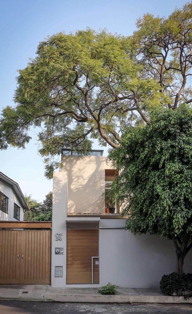 Giấc mơ về một ngôi nhà sinh thái, thân thiện với môi trường sẽ nằm trong tầm tay nhờ thiết kế nhà vô cùng hoàn hảo dưới đây - Ảnh 18.