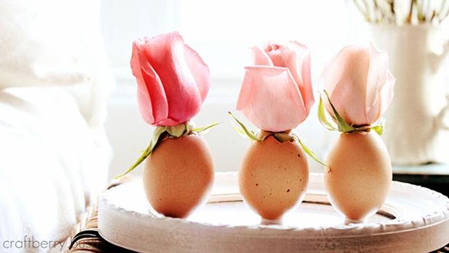 11 cách tận dụng vỏ trứng để trang trí nhà - giải pháp vừa rẻ vừa độc đáo đến khó tin - Ảnh 10.