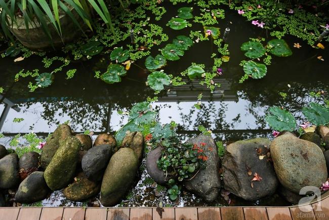Biệt thự sân vườn sở hữu những khoảng xanh đẹp đến từng chi tiết của vợ chồng KTS ở Hà Nội - Ảnh 5.