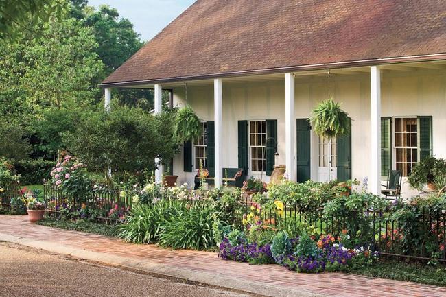 4 ý tưởng trang trí sân vườn bằng các loài hoa cho mùa hè rực rỡ - Ảnh 1.