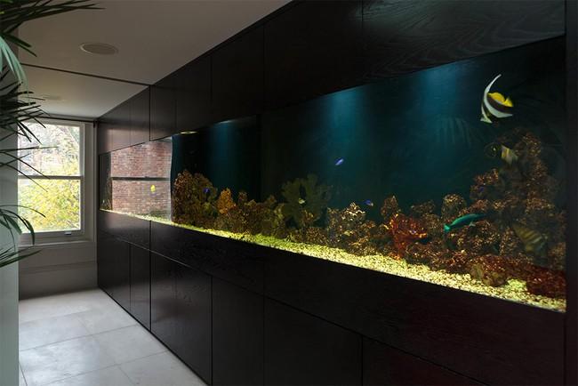 Bể cá được lồng ghép vào nội thất ngôi nhà, bạn đã biết xu hướng trang trí thịnh hành nhất hiện nay chưa? - Ảnh 2.