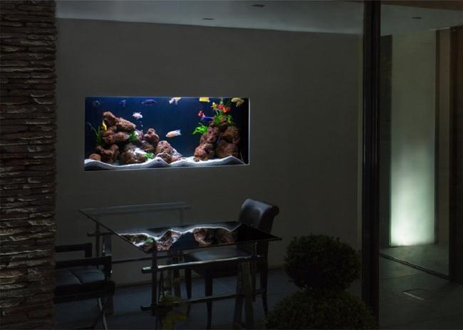 Bể cá được lồng ghép vào nội thất ngôi nhà, bạn đã biết xu hướng trang trí thịnh hành nhất hiện nay chưa? - Ảnh 10.