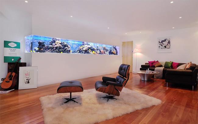 Bể cá được lồng ghép vào nội thất ngôi nhà, bạn đã biết xu hướng trang trí thịnh hành nhất hiện nay chưa? - Ảnh 11.