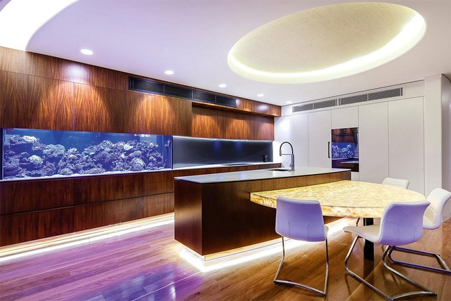 Bể cá được lồng ghép vào nội thất ngôi nhà, bạn đã biết xu hướng trang trí thịnh hành nhất hiện nay chưa? - Ảnh 13.