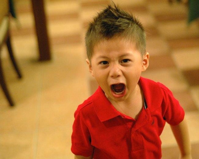 Đây là lý do vì sao bố mẹ nên để con cứ đấm đá và khóc thét khi tức giận - Ảnh 1.