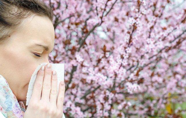 Chuyên gia Đông ý nói gì về cách kiểm soát viêm mũi dị ứng bằng nước muối? - Ảnh 1.