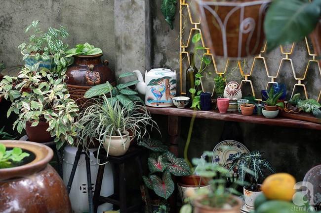 Ngôi nhà cấp 4 nhỏ hẹp nhưng góc nào cũng rất tình của chàng trai 8X ở Sài Gòn - Ảnh 1.