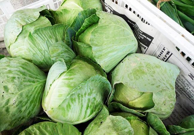 Đi chợ thường xuyên mà chị em không biết mẹo chọn bắp cải sạch tươi này thì mãi mãi không có rau ngon để ăn - Ảnh 2.