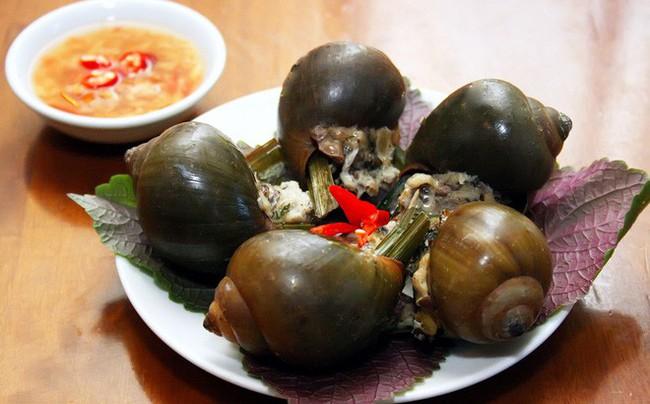 Không chỉ là món ăn vặt khoái khẩu, ốc nhồi còn có thể làm thuốc chữa bệnh, vào mùa thu càng nên dùng - Ảnh 1.