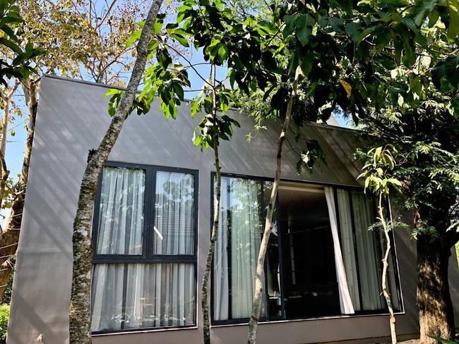 Nhà vườn đẹp như châu Âu rộng 500m² ở Long An của ca sĩ Cao Thái Sơn - Ảnh 12.