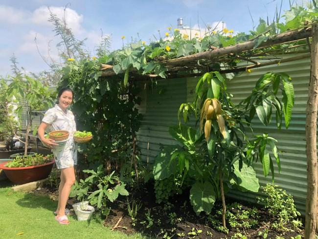 Vườn rau xanh tươi mơn mởn trong biệt thự tiền tỷ do chồng Ốc Thanh Vân trồng tặng 4 mẹ con - Ảnh 5.