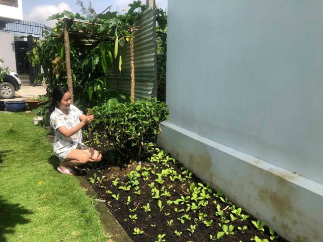 Vườn rau xanh tươi mơn mởn trong biệt thự tiền tỷ do chồng Ốc Thanh Vân trồng tặng 4 mẹ con - Ảnh 3.