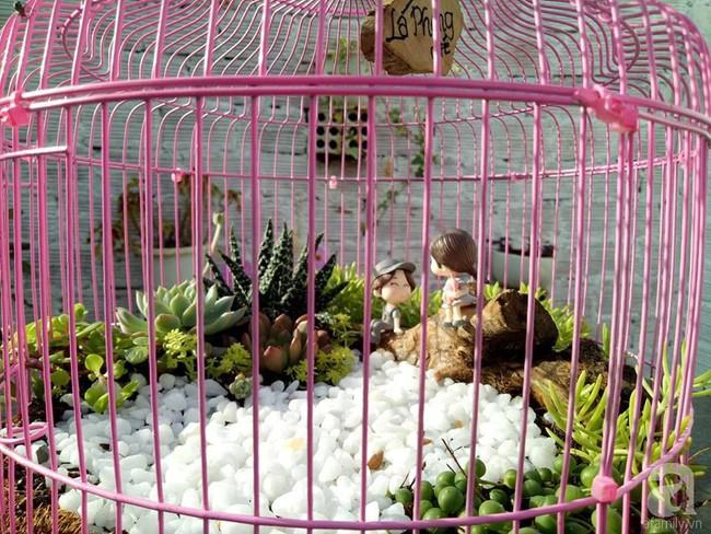 Mẹ bỉm sữa bận rộn chăm con vẫn tạo cả khu vườn sen đá độc đáo từ đồ dùng cũ ở Lâm Đồng - Ảnh 13.