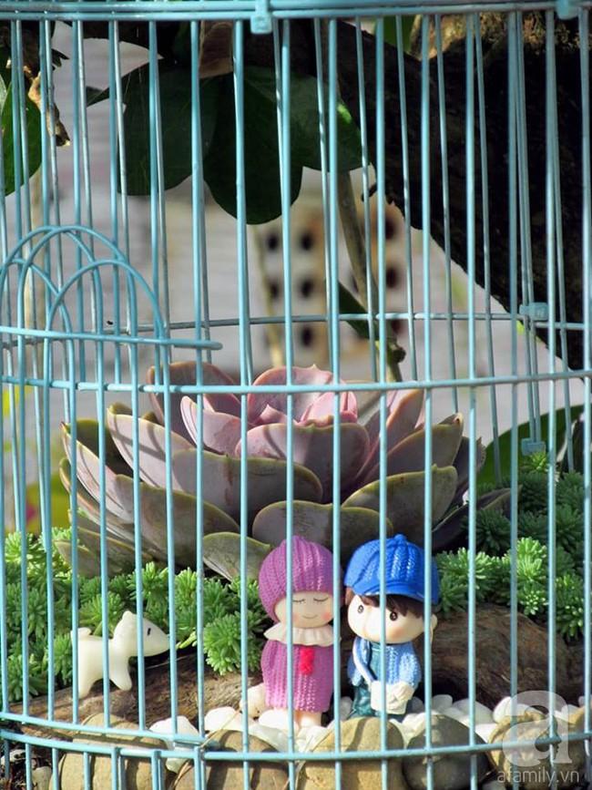 Mẹ bỉm sữa bận rộn chăm con vẫn tạo cả khu vườn sen đá độc đáo từ đồ dùng cũ ở Lâm Đồng - Ảnh 12.