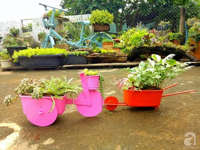 Mẹ bỉm sữa bận rộn chăm con vẫn tạo cả khu vườn sen đá độc đáo từ đồ dùng cũ ở Lâm Đồng - Ảnh 6.