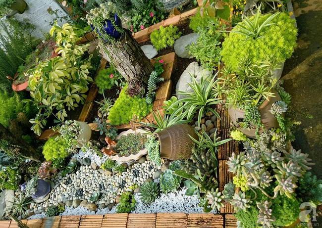 Mẹ bỉm sữa bận rộn chăm con vẫn tạo cả khu vườn sen đá độc đáo từ đồ dùng cũ ở Lâm Đồng - Ảnh 2.
