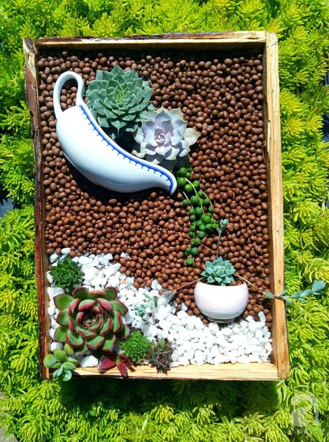Mẹ bỉm sữa bận rộn chăm con vẫn tạo cả khu vườn sen đá độc đáo từ đồ dùng cũ ở Lâm Đồng - Ảnh 21.