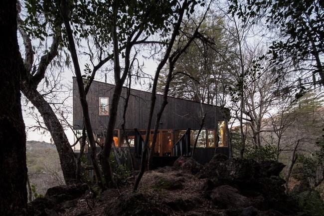 Cảm giác như chốn thiên đường nếu bạn một lần được thức dậy sớm trong ngôi nhà gỗ này - Ảnh 1.