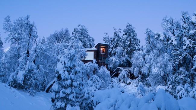 Cảm giác như chốn thiên đường nếu bạn một lần được thức dậy sớm trong ngôi nhà gỗ này - Ảnh 3.