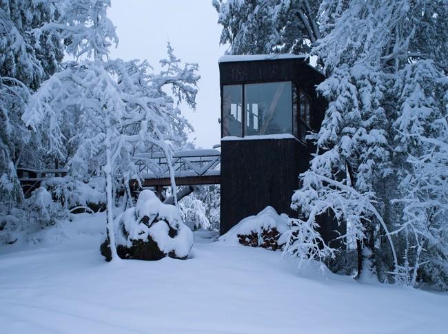 Cảm giác như chốn thiên đường nếu bạn một lần được thức dậy sớm trong ngôi nhà gỗ này - Ảnh 4.