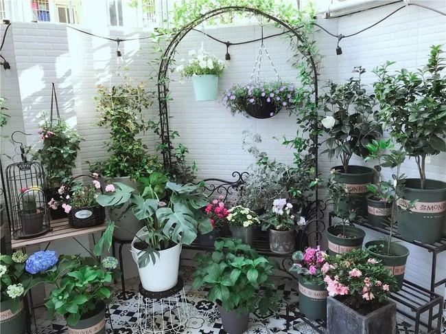 Căn nhà cấp 4 đẹp bình yên với vườn cây cùng không gian nội thất đẹp đến từng mét vuông diện tích - Ảnh 6.