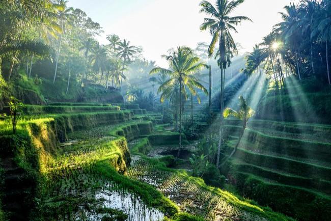6 điểm du lịch đáng đồng tiền bát gạo nên đến vào 2019, một điểm ở ngày Đông Nam Á - Ảnh 6.