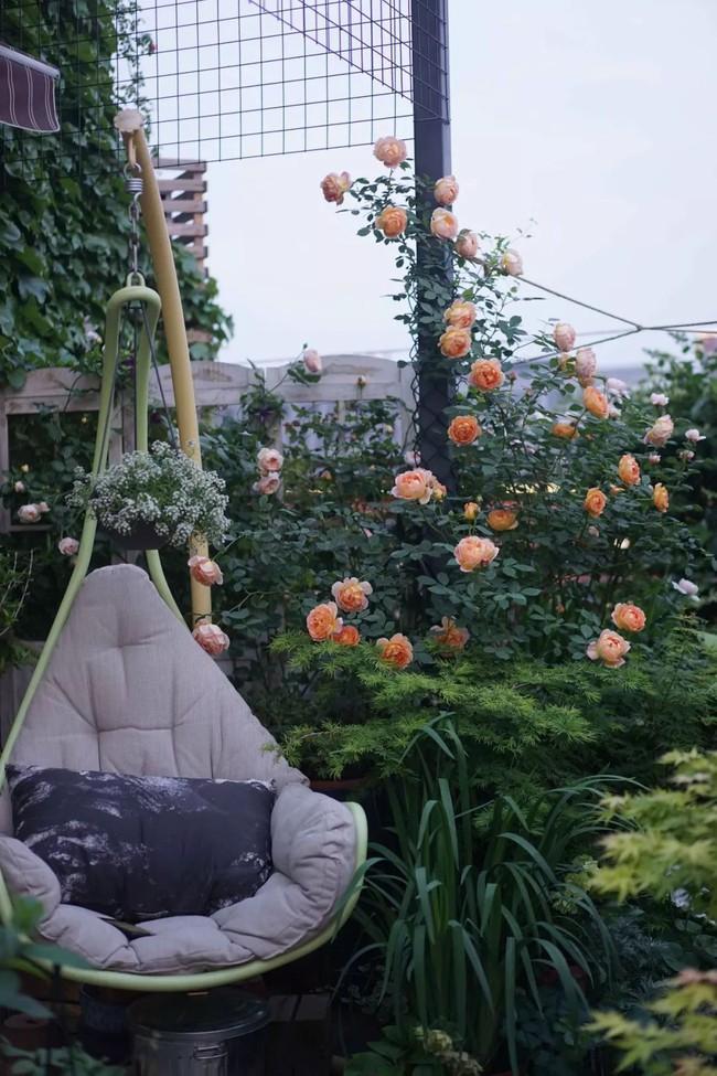 Bà mẹ đơn thân cùng con gái 5 tuổi dành trọn hai năm để biến sân thượng thành khu vườn đẹp như cổ tích - Ảnh 13.