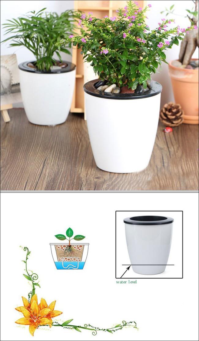 8 thiết kế chậu trồng cây vừa nhỏ gọn lại vô cùng thông minh cho nhà thêm xanh mát   - Ảnh 1.