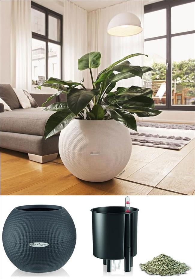8 thiết kế chậu trồng cây vừa nhỏ gọn lại vô cùng thông minh cho nhà thêm xanh mát   - Ảnh 2.