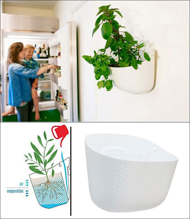 8 thiết kế chậu trồng cây vừa nhỏ gọn lại vô cùng thông minh cho nhà thêm xanh mát   - Ảnh 4.