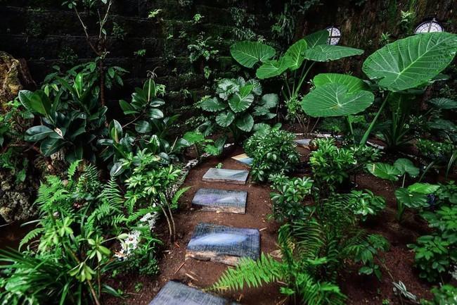 Người con hiếu thuận dành dụm tiền để thiết kế khu vườn thật đẹp tặng cha - Ảnh 3.