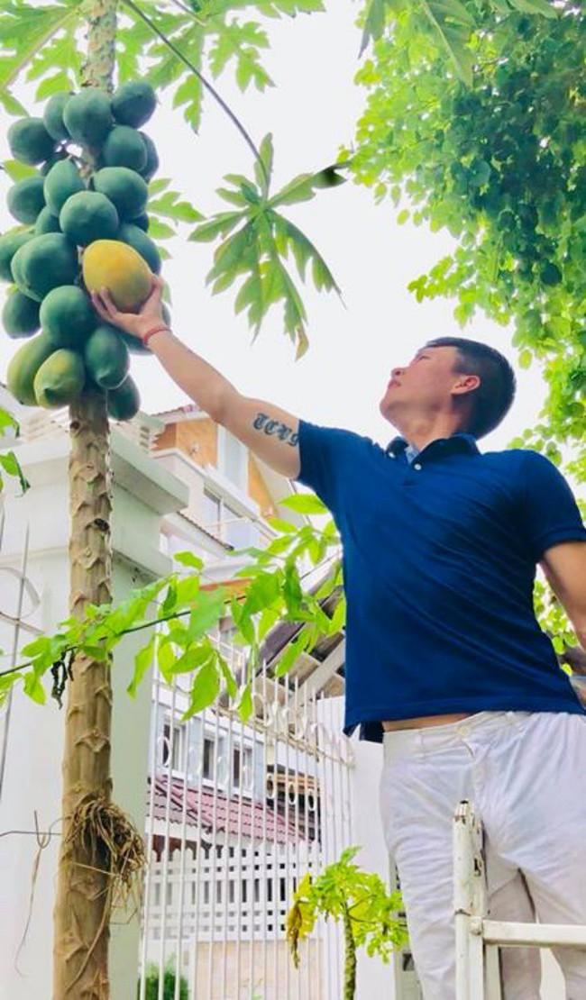 Vợ chồng Công Vinh – Thủy Tiên vui vẻ thu hoạch rau quả sạch trong vườn nhà - Ảnh 4.