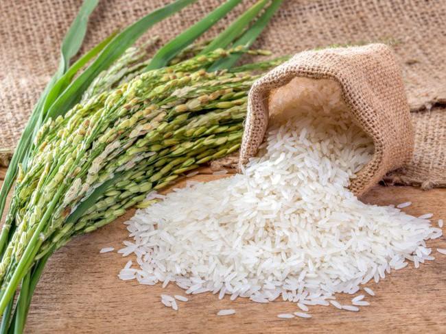 Mua gạo về là tôi lại cho vũ khí bí mật này vào thùng bảo quản, có để cả tháng gạo cũng không bị mốc meo, mối mọt - Ảnh 1.