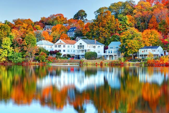 Những ngôi nhà dưới tán lá vàng lãng mạn như một bức tranh phong cảnh tuyệt đẹp - Ảnh 10.
