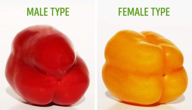 Các đầu bếp chuyên nghiệp thường chọn trái cây theo cách này, đảm bảo trái sẽ luôn thơm, ngon, tươi và giàu chất dinh dưỡng nhất - Ảnh 3.