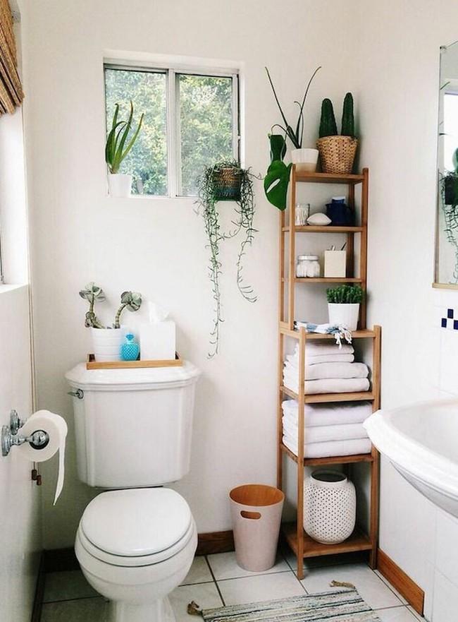 Đem cây xanh vào phòng tắm, xu hướng đang hot hiện nay, trông thì rườm rà nhưng lại đơn giản hơn bạn nghĩ! - Ảnh 10.