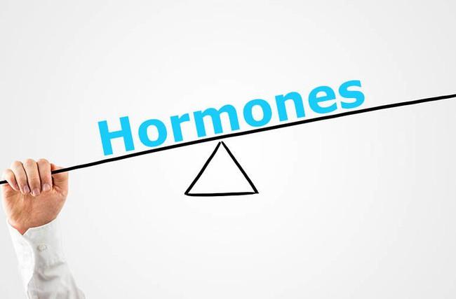8 cách tự nhiên để cân bằng hormone trong cơ thể, cách thứ 3 còn đem lại nhiều tác dụng hơn cả mong đợi - Ảnh 1.