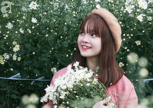 Tháng 11 Hà Nội, đến đâu sẽ nhìn thấy gái xinh nhiều nhất? Xin thưa, vườn cúc họa mi! - Ảnh 8.