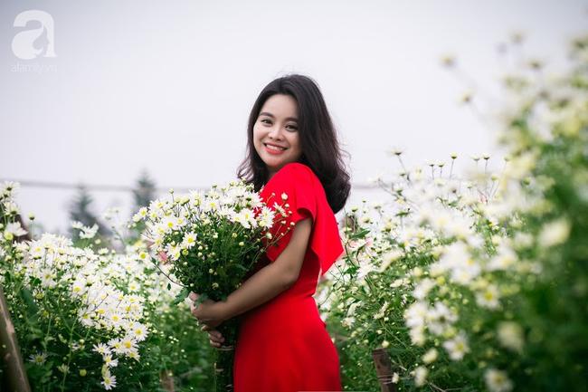 Tháng 11 Hà Nội, đến đâu sẽ nhìn thấy gái xinh nhiều nhất? Xin thưa, vườn cúc họa mi! - Ảnh 2.
