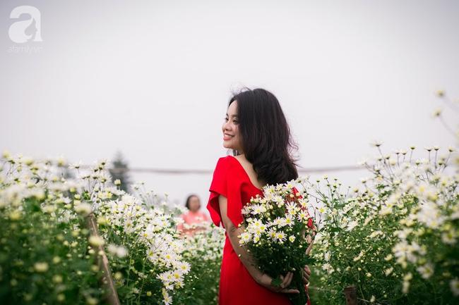 Tháng 11 Hà Nội, đến đâu sẽ nhìn thấy gái xinh nhiều nhất? Xin thưa, vườn cúc họa mi! - Ảnh 3.