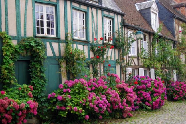 Ngắm những ngôi nhà thơ mộng với giàn hoa đẹp như cổ tích ở làng quê nước Pháp - Ảnh 14.