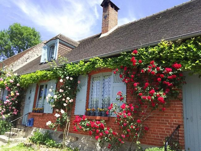 Ngắm những ngôi nhà thơ mộng với giàn hoa đẹp như cổ tích ở làng quê nước Pháp - Ảnh 12.