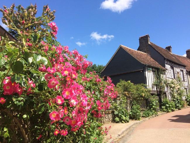 Ngắm những ngôi nhà thơ mộng với giàn hoa đẹp như cổ tích ở làng quê nước Pháp - Ảnh 5.