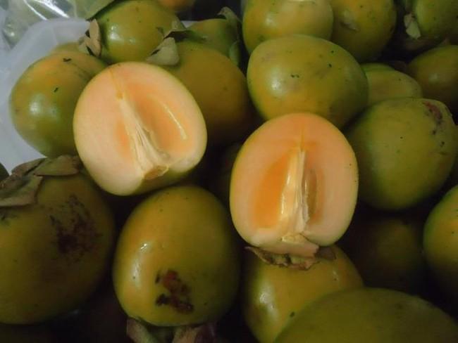 Người phụ nữ bị tắc ruột sau khi ăn 10 quả hồng, cảnh báo mọi người cẩn trọng khi ăn loại quả này - Ảnh 1.