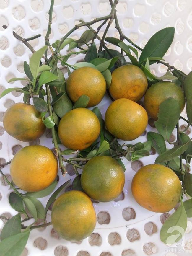 Kinh nghiệm trồng cả vườn cây trái xum xuê như trang trại trên sân thượng của mẹ đảm ở Biên Hòa - Ảnh 11.