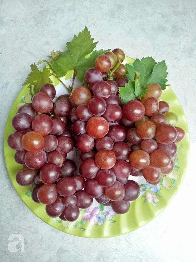 Kinh nghiệm trồng cả vườn cây trái xum xuê như trang trại trên sân thượng của mẹ đảm ở Biên Hòa - Ảnh 15.