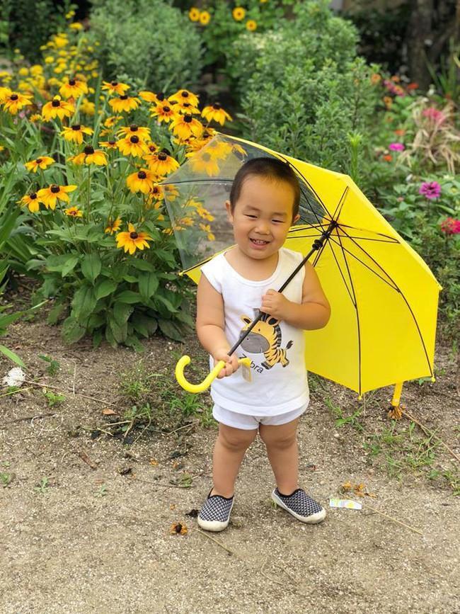Khu vườn 1000m² giúp mẹ Việt ở Nhật thỏa sức trồng đủ loại rau quả, cây trái của quê hương - Ảnh 19.