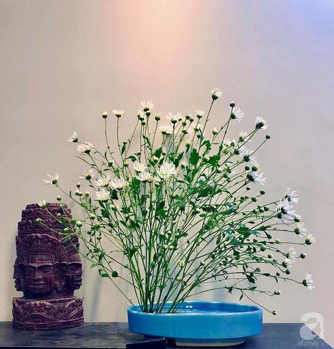 Làm đẹp nhà đón mùa đông Hà Nội với cúc họa mi đẹp dịu dàng, bình yên  - Ảnh 24.